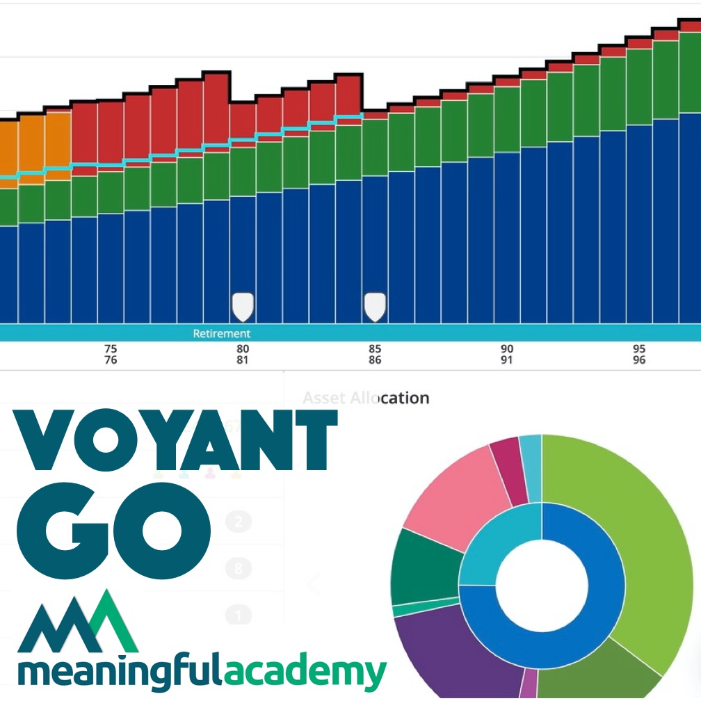 Meaningful Academy: A taste of Voyant GO
