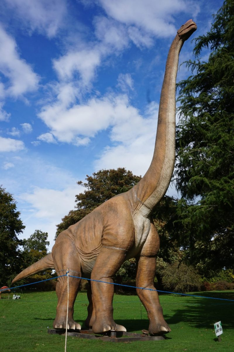 Jurassic Kingdom Leeds