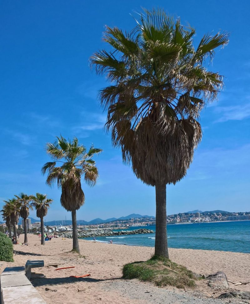 top tips provence cote d'azur Frejus beach