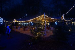 Christmas Experience Lotherton Hall Elf Village