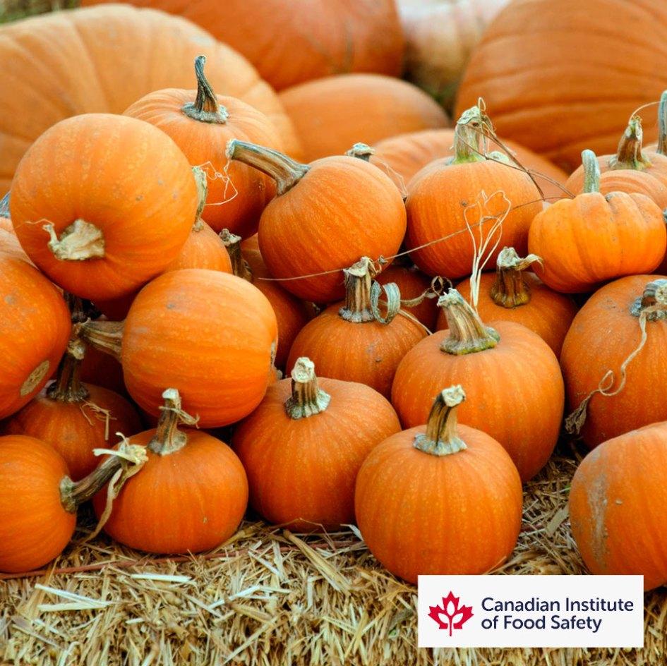 pumpkins on haybales