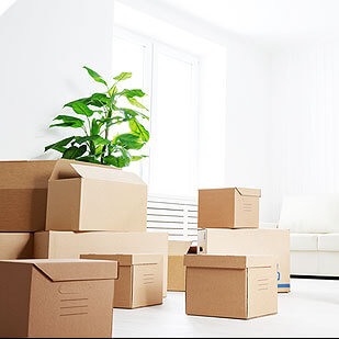 Make Moving Stress Free And Simplified With Our Move In Move Out Services In Clermont FL