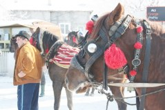 Încuratul cailor la Luncavița