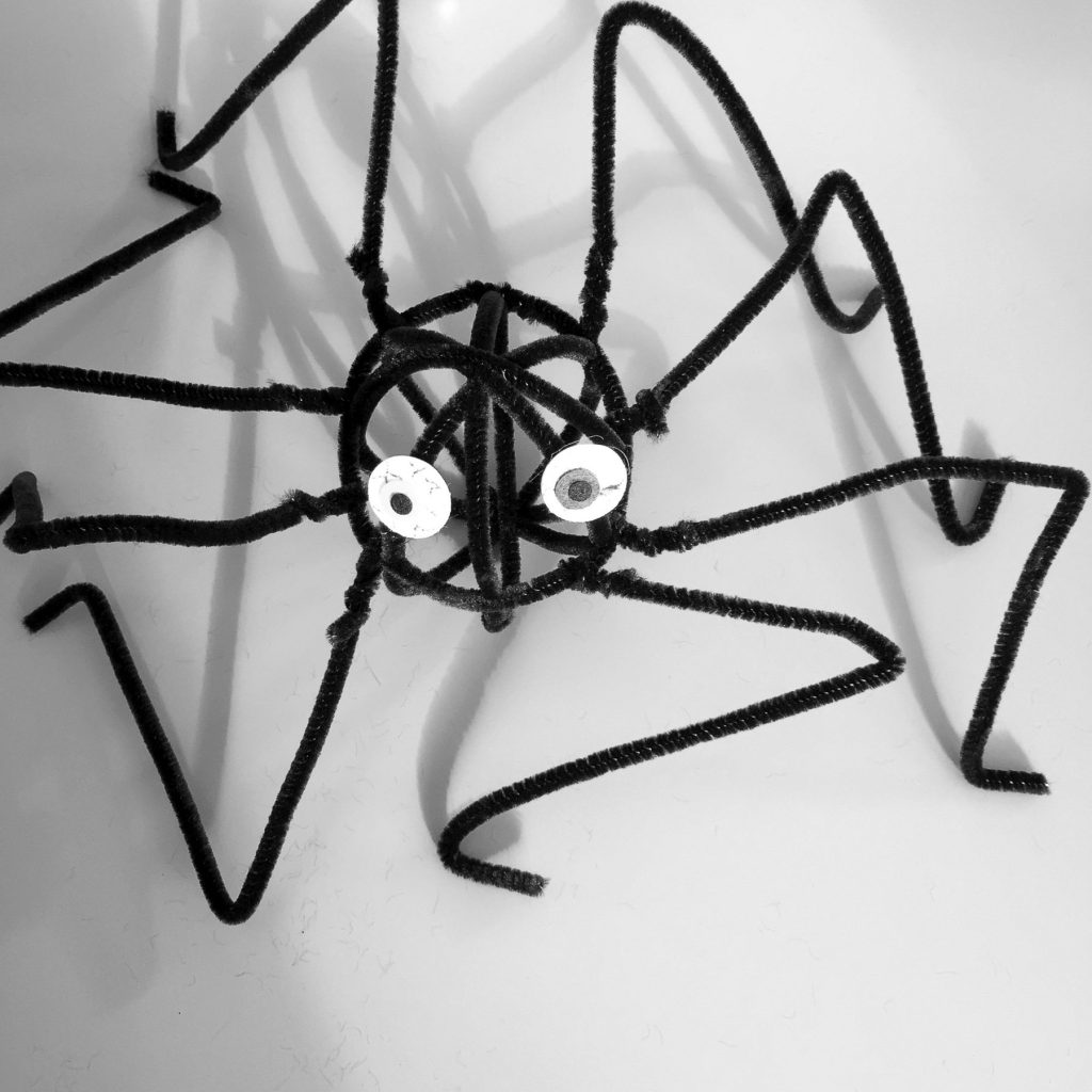 black pipe cleaner spider with googly eyes