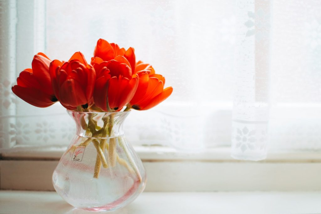 red-tulips-in-clear-glass-vase