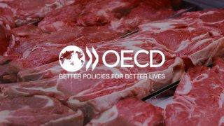 Прогноз ОЕСР-ФАО щодо виробництва м'яса у світі до 2030 року
