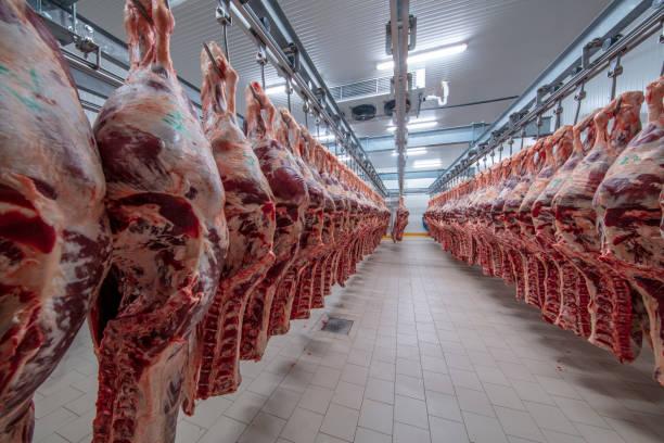 Бразилія досягла найбільшого виробництва свинини за останні 24 роки