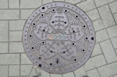 Another awesome Japanese drain cover