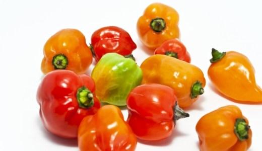 ハバネロとタバスコとの違いとは?原料や料理についてご紹介!かけすぎには要注意!!