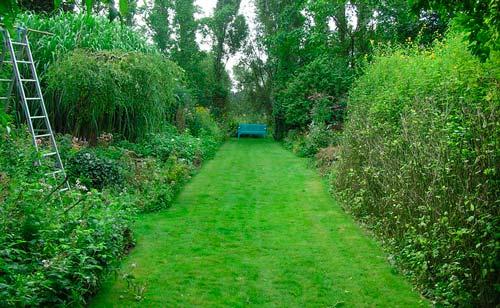 За дорожками из травы нужен особый уход