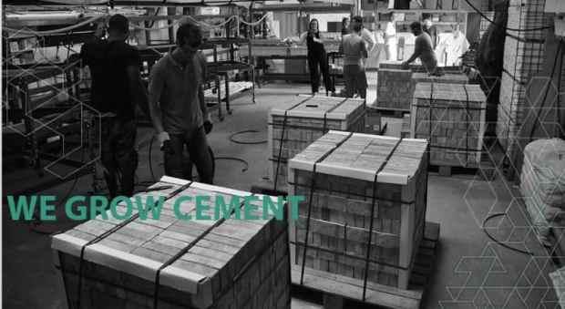 growing bricks, block by block, for a greener world | @meccinteriors | design bites