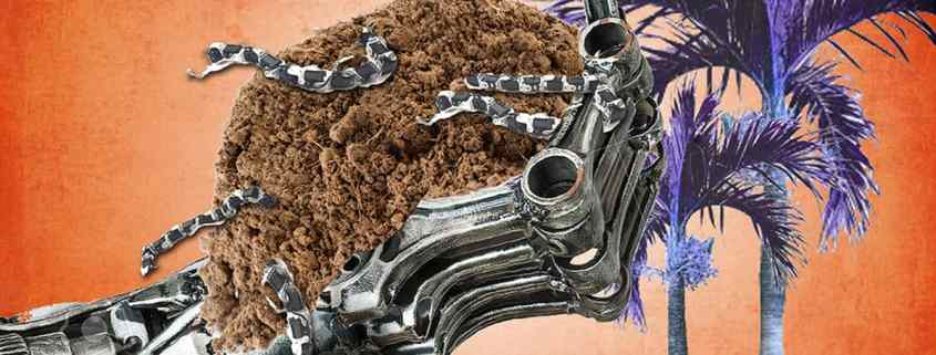 Soils with robot worms