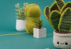 Free Crochet Pot Leaf Pattern for Making Decorations Crochet An Amigurumi Snake Plant No Green Thumb Required