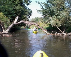Kayaking on the Ruda River, Poland