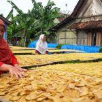 Wardati (55), pegrajin kerupuk kedelai di Dusun Gading, Desa Tuntang, Kecamatan Tuntang, Kabupaten Semarang tengah menjemur kerupuk, Jumat(15/12/2017). Pada musim hujan produksi kerupuk menurun lantaran minim sinar matahari.(KOMPAS.com/Syahrul Munir)