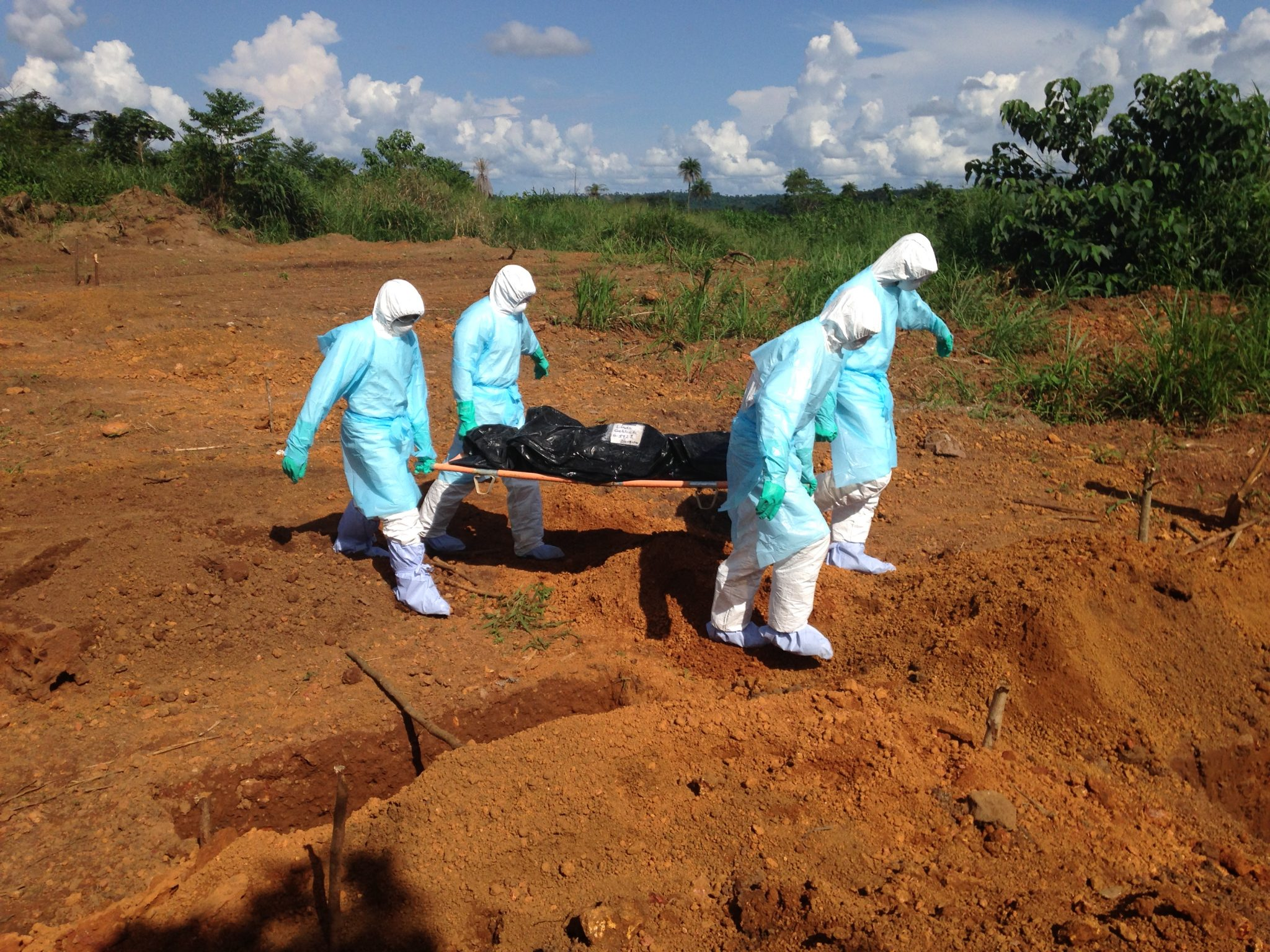 the characteristics of the ebola virus in africa Current outbreak of the ebola virus was started by reporting the  outbreak of ebola in west africa  virologic characteristics ebola virus is a lipid.