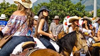 Desfile A Caballo: The 25th Annual Horse Parade
