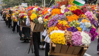 Desfile de Silleteros: The 56th Annual Flower Parade