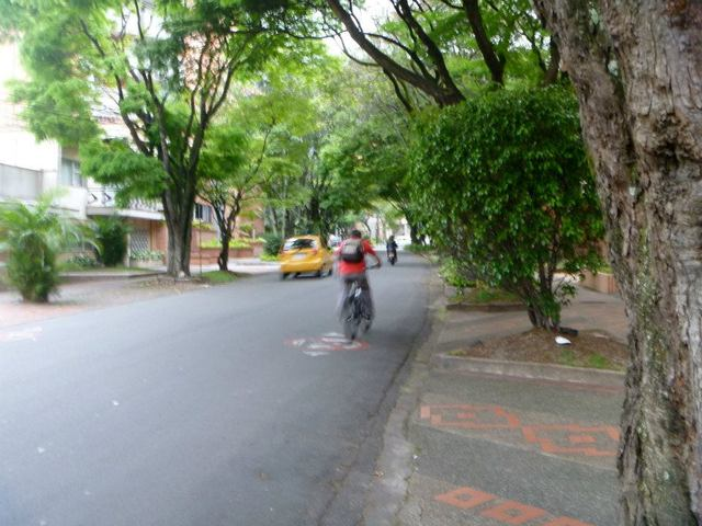 Circular 4, with all its trees forming a canopy over the road, is my favorite street in Laureles.