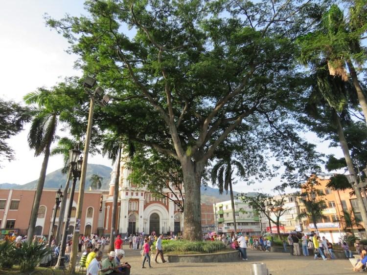 Parque Bello
