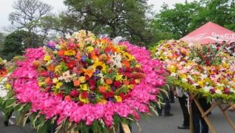 Desfile de Silleteros 2015: Highlight of La Feria de las Flores