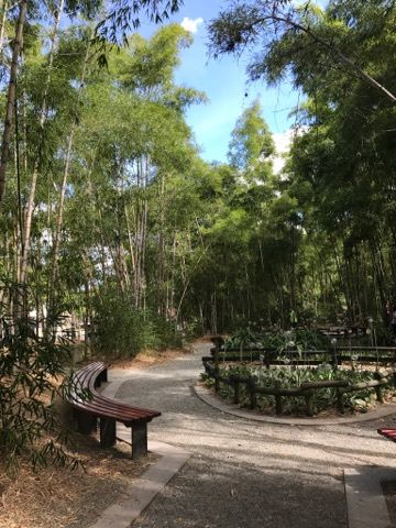 Caja Madera: a nice place for a bit of natural solitude in El Centro