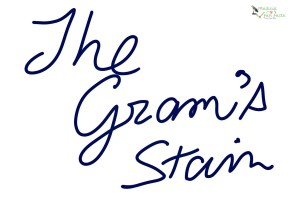 The Gram's stain Medical Fun Facts Gary Lum