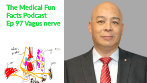 The Medical Fun Facts Podcast Vagus nerve