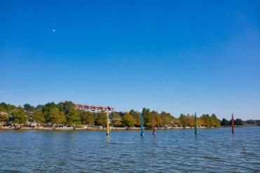 Bollards of Lake Ginninderra