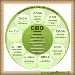 kanabinoidy-MediCann