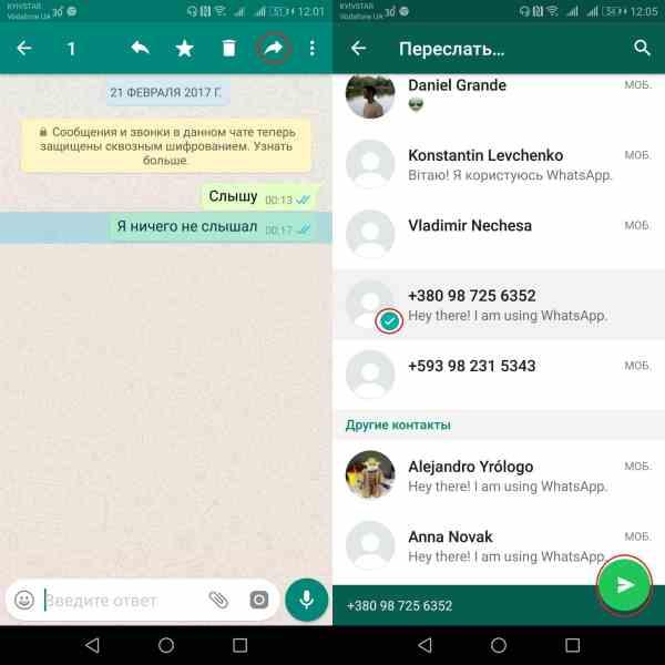 Как переслать сообщение в WhatsApp другому человеку