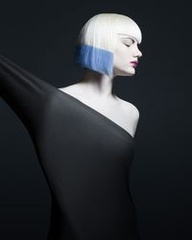 NAHA 2013 Finalist: Student Hairstylist of the Year: Karissa Sample Photographer: Babak