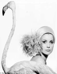 Catherine Deneuve by David Bailey