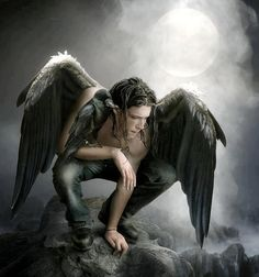 male angel with raven