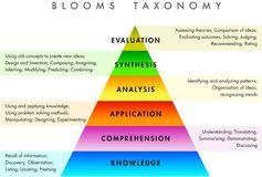 tassonomia di bloom, articolo Gabriella Giudici