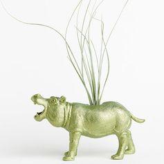 Air Plant Hippo Planter Room Decor, College Dorm Ornament. Easy. Perfection.