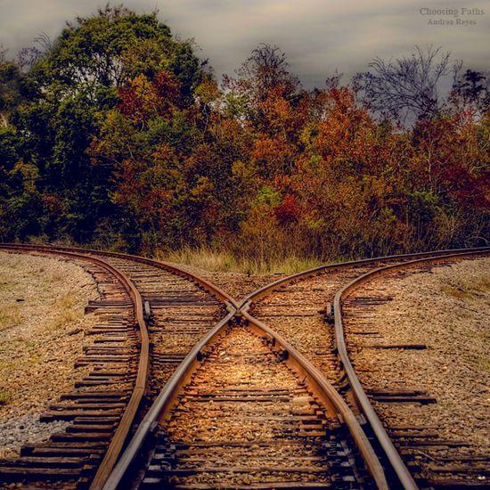 Choosing Paths by ~Andrea-Reyes