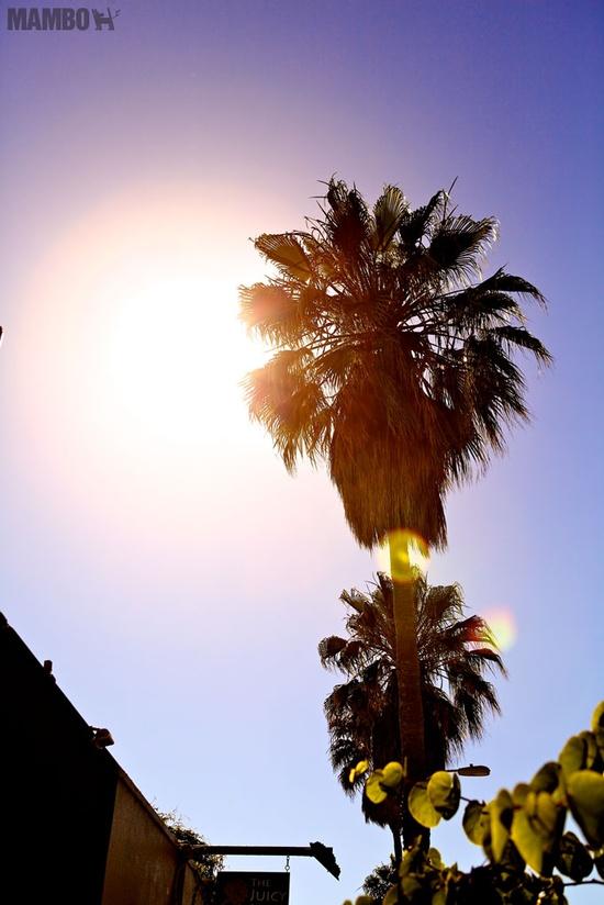 LA sun...
