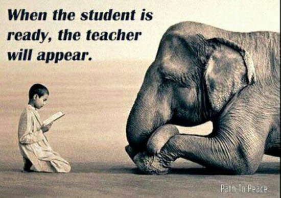 """Image result for """"""""when the student is ready, the teacher will appear"""""""