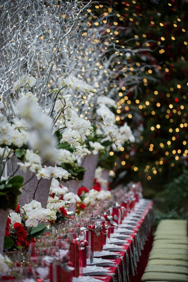 Christmas at Longwood Gardens, PA