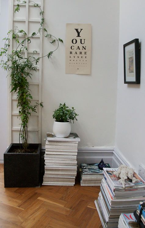 Notes-On-Lifestyle-Climbing-jasmine