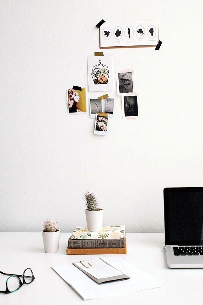 studio cactus