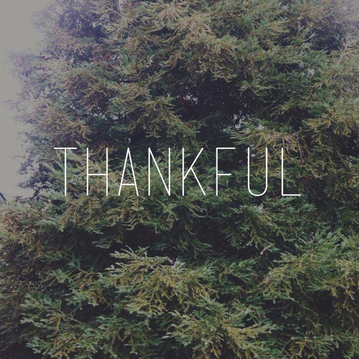 | thankful |