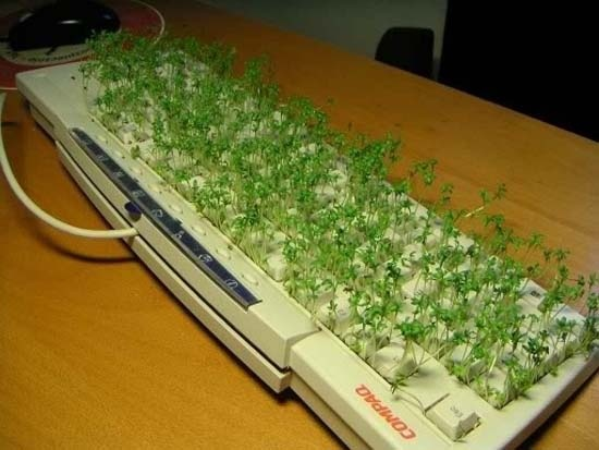 try turning your tech into a garden