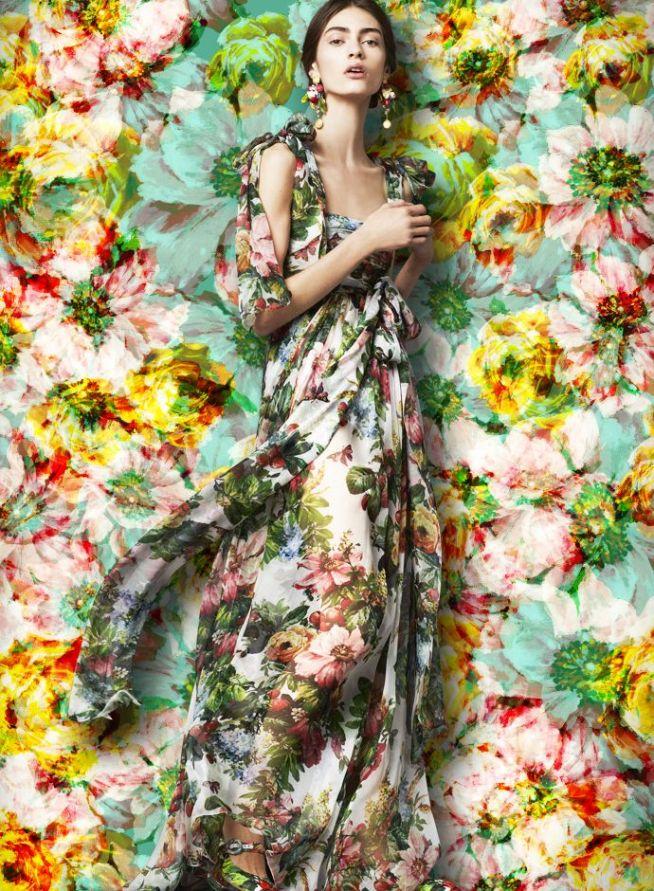 Dolce & Gabbana flora and fauna Collection