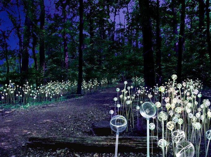 Longwood Gardens has commissioned acclaimed light artist Bruce Munro to transform the entire property into a fantastical illuminated wonderland. (Image courtesy Longwood)