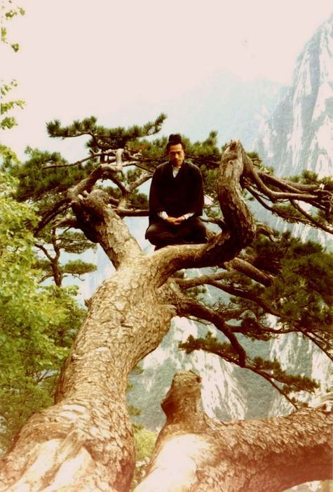 The master observes the world but trusts his inner vision. He allows things to come & go. He prefers what is within to what is without.(12th verse Tao Te Ching)
