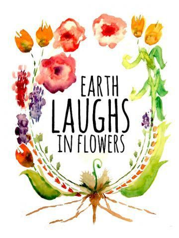 """""""Earth laughs in flowers!"""" -Ralph Waldo Emerson #nature #quote #FlowerShop"""