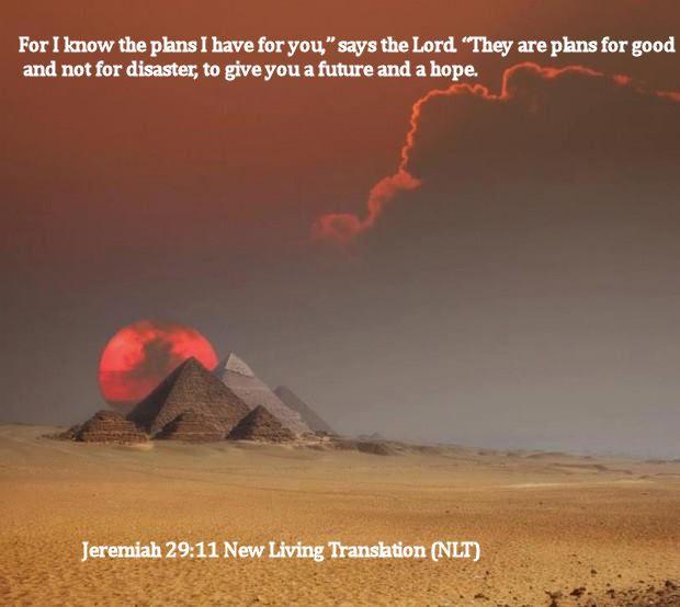 Jeremiah 29.11 New Living Translation (NLT)