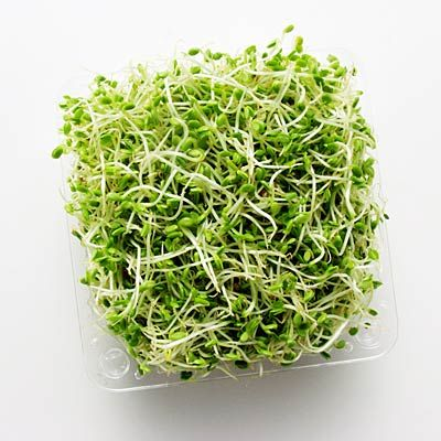Alfalfa is a SUPERFOOD that adds a nice crunch to salads or sandwiches. | http://www.health.com/health/gallery/0,,20662664_2,00.html